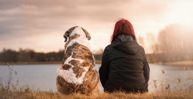le chien et l'homme