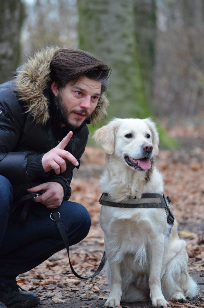 apprentissage des chiens