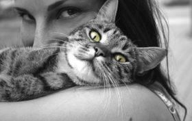 petsitter pour faire garder un animal chez soi