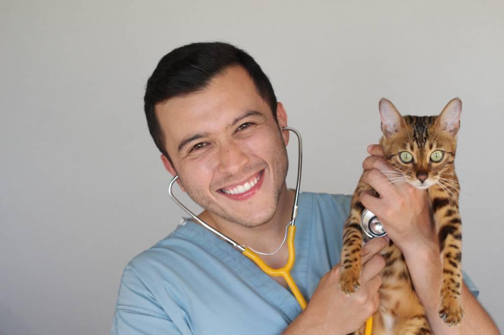 séléction du vétérinaire pour son animal