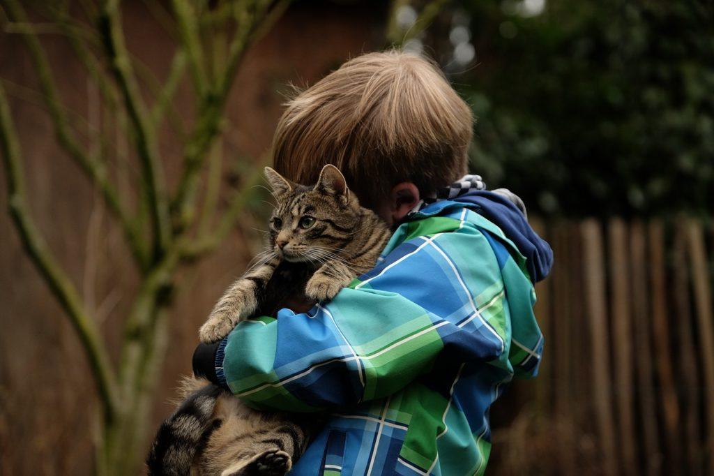 offrir un chat à son fils