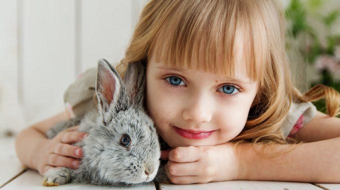 offrir un lapin à sa fille