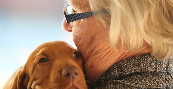 Choisir un chien pour une personne âgée