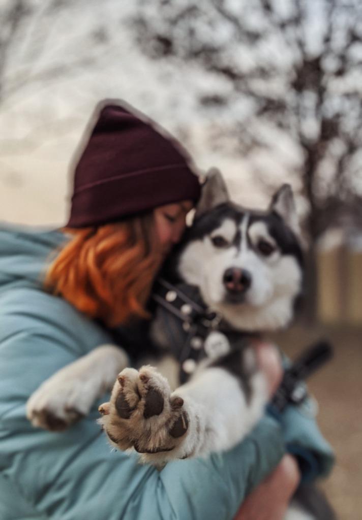 chien et solitude