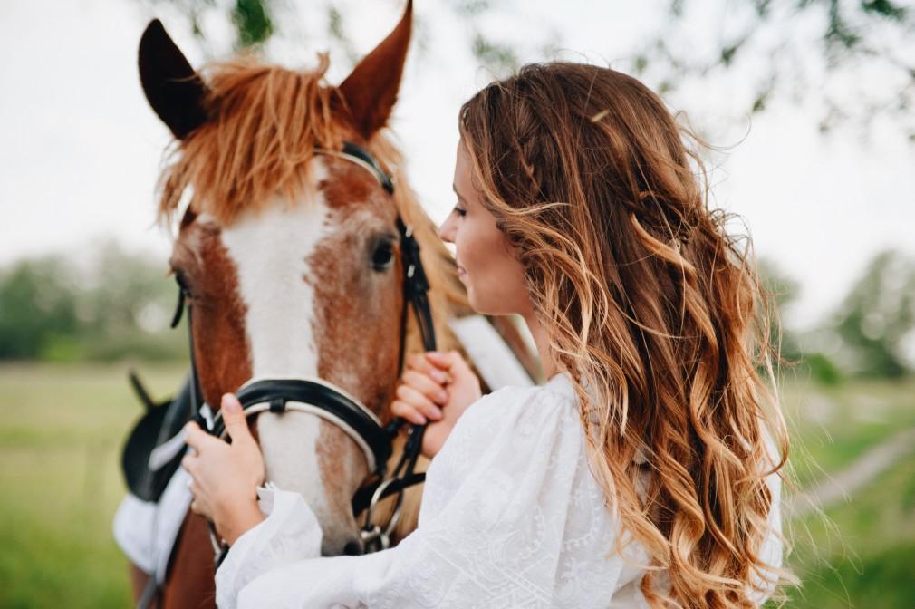 accessoire cheval