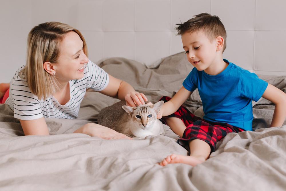relation animal et famille